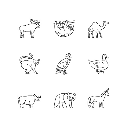 Mammals and birds pixel perfect linear icons set