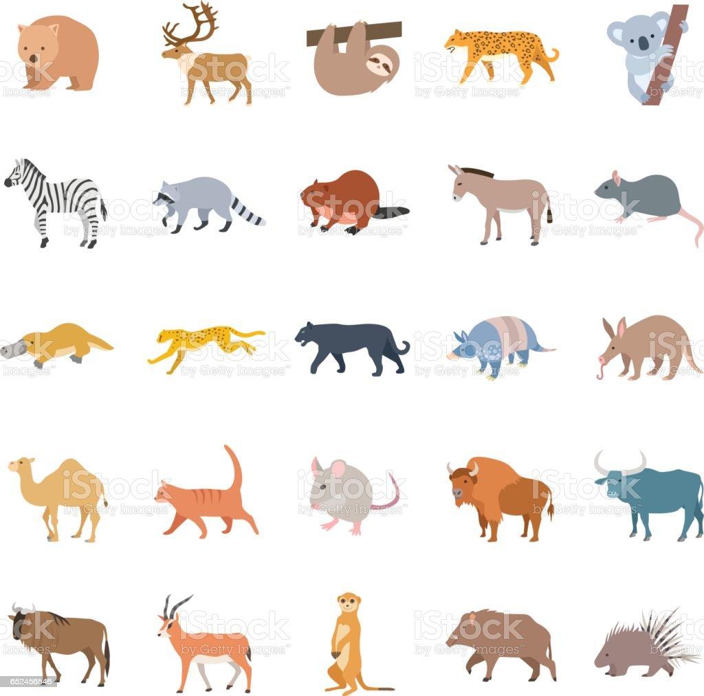 Mammals II color vector icons vector art illustration