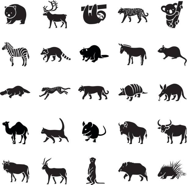 säugetiere-ii-vektor-icons - ameisenbär stock-grafiken, -clipart, -cartoons und -symbole
