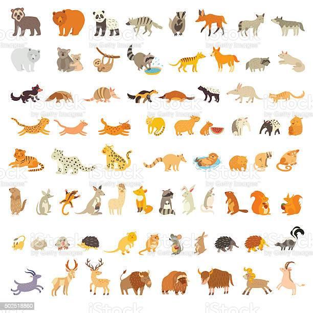 Mammals of the world extra big animals set vector id502518860?b=1&k=6&m=502518860&s=612x612&h=9gfkgoad3jpojru2go6v4dhffdjguzdi8cd cck5srk=