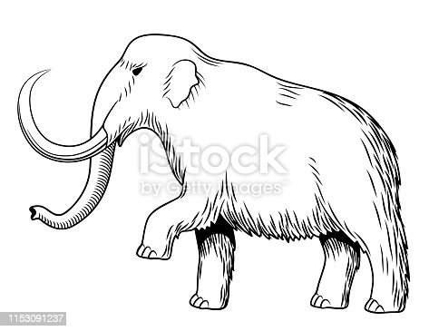 Mammoth. Black and white stylized vector illustration, isolated on white. Side view