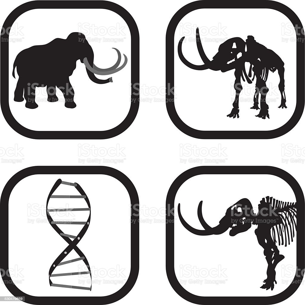 Mammoth DNA vector art illustration