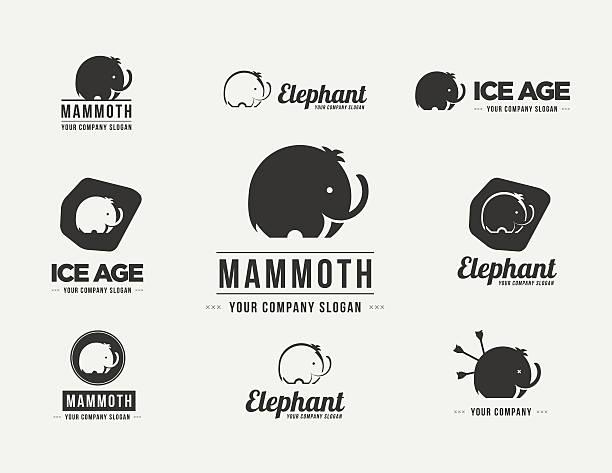 mammut silhouette vektor-abzeichen-set. sammlung von der elefant symbole - eiszeit stock-grafiken, -clipart, -cartoons und -symbole