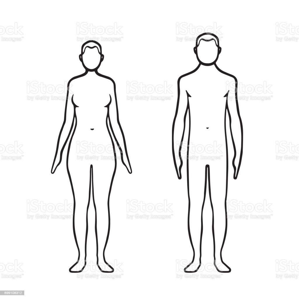 Ilustración de Hombre Y Mujer Cuerpo y más banco de imágenes de ...