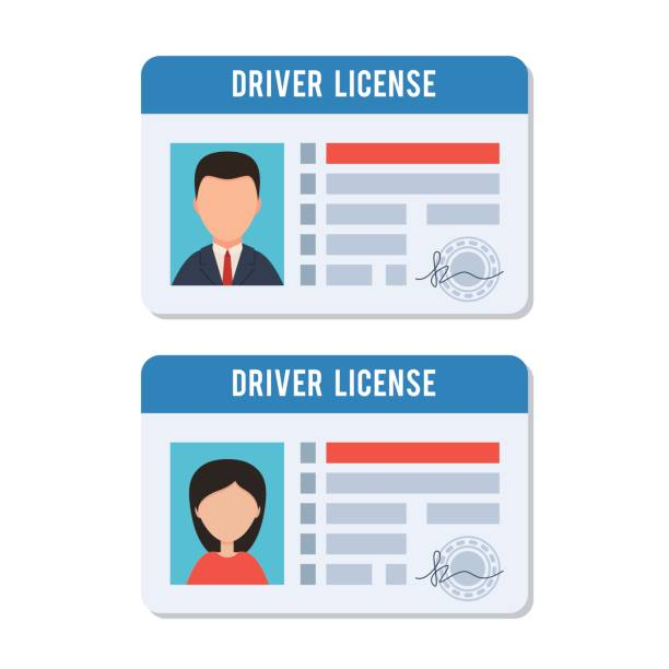 Man and woman driver license vector art illustration