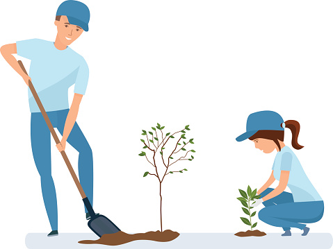 Man and woman holding shovel and planting plants and trees