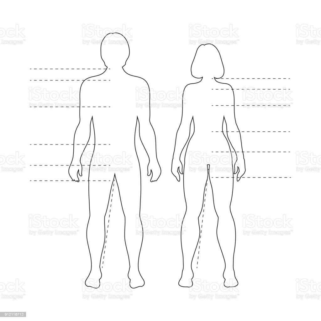 Man And Woman Human Body Silhouettes With Pointers Vector Isolated ...