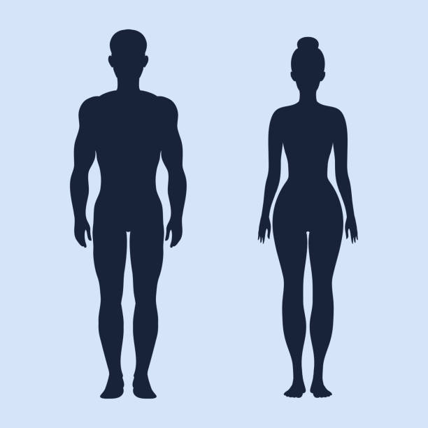Man and woman standing vector silhouettes vector art illustration