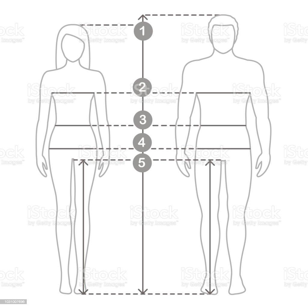 Mann Und Frau Größen Messungen Vermessung Des Menschlichen