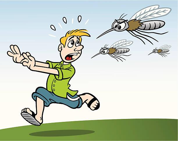 illustrazioni stock, clip art, cartoni animati e icone di tendenza di uomo qualcuno ti insegue da mosquitos - zanzare