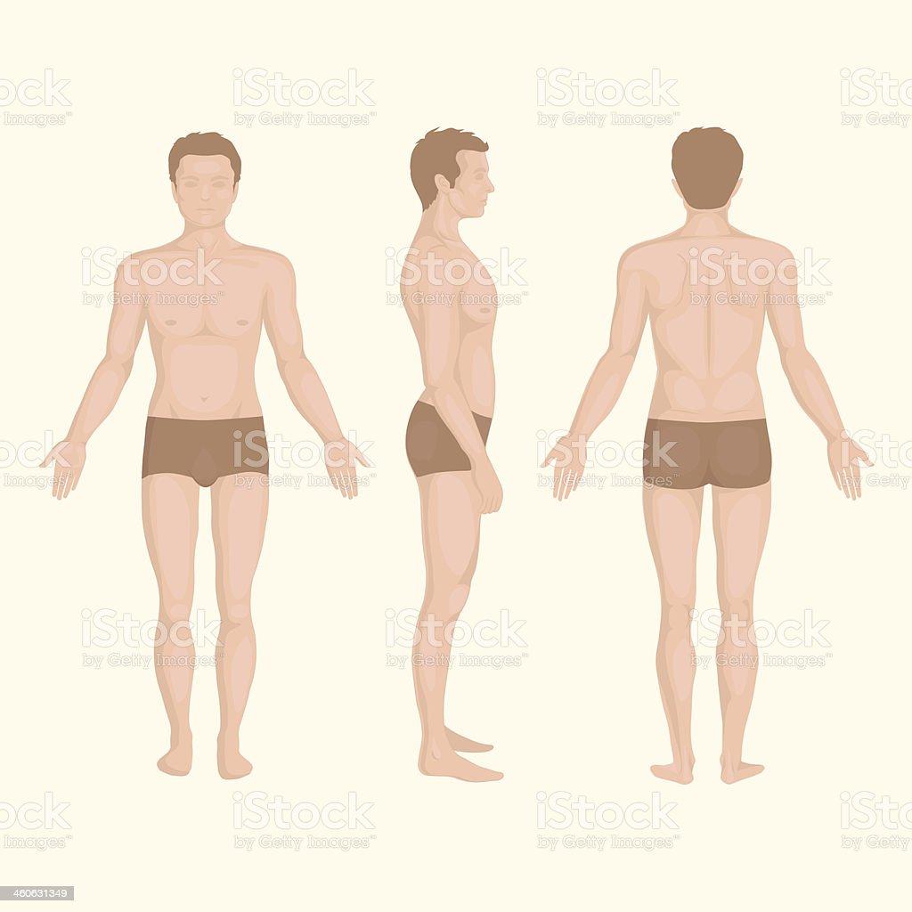 Ilustración de Hombre Cuerpo Frontal Lateral Y Trasera Postura ...