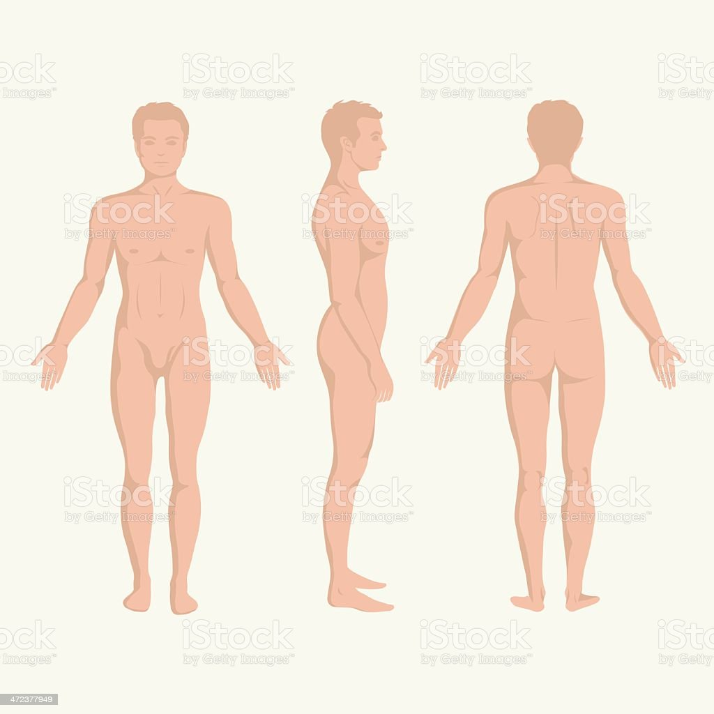 Mann Körper Vorne Hinten Und An Der Seite Der Pose Stock Vektor Art ...