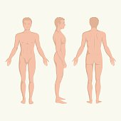 man body, front, back and side  human pose