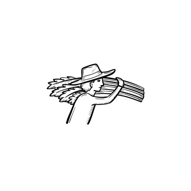 ilustraciones, imágenes clip art, dibujos animados e iconos de stock de icono de esbozo dibujado de mano de trigo que el hombre - straw field