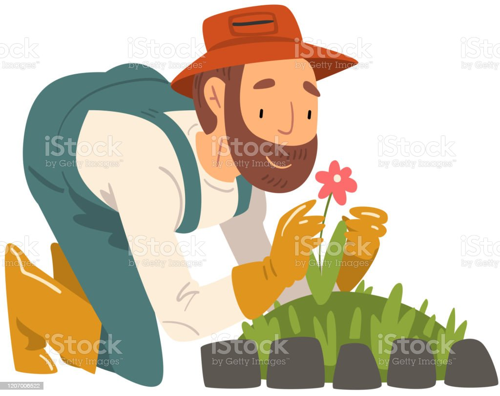 Couple Of Gardeners Agriculturists Watering Flowers Vector Illustration  Farmers Family With Watering Cans Pots In Front Of House And Mills Care Of  Sunflowers Plants Stock Illustration - Download Image Now - iStock