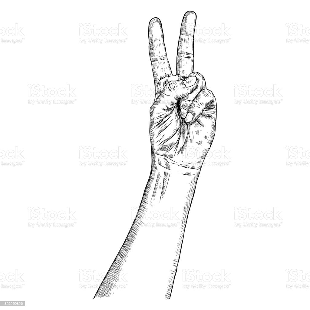 man hand gesture pointing up v or victory male fingers hand drawn