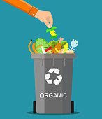 man hand throws garbage into a organic container. Vector illustration in flat style