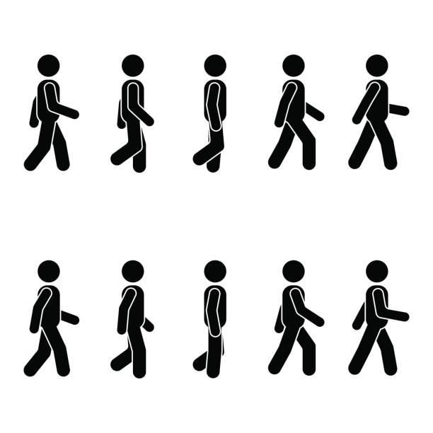 남자 사람들은 다양 한 걷는 위치. 자세 스틱 그림입니다. 화이트에 벡터 서 사람 아이콘 기호 기호 그림 - 스틱피겨 stock illustrations