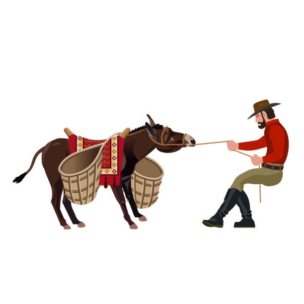 man pulling a stubborn donkey - old man funny pictures stock illustrations
