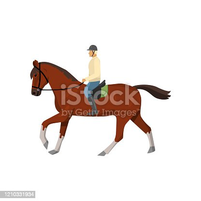 istock Man riding dark brown jogging horse isolated against white background 1210331934