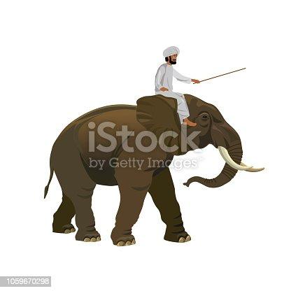 Indian man riding elephant. Vector illustration isolated on white background