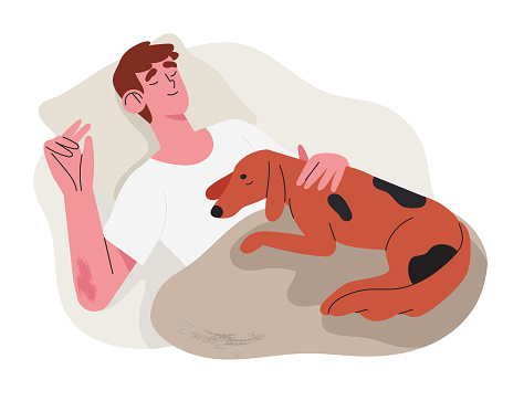 Man sleep comfortably and relaxed in his bad with pet dog puppy late at night. Concept of orthopedic or countour memory foam pillow or duvet shop and other accessories for healthy night sleep.