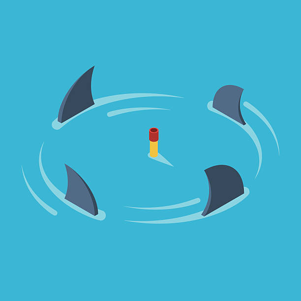 Man surrounded by sharks Man snorkeling in the middle of the ocean surrounded by sharks. Business metaphor the concept of risk, danger and stress. Vector colorful illustration isometric flat style animal fin stock illustrations