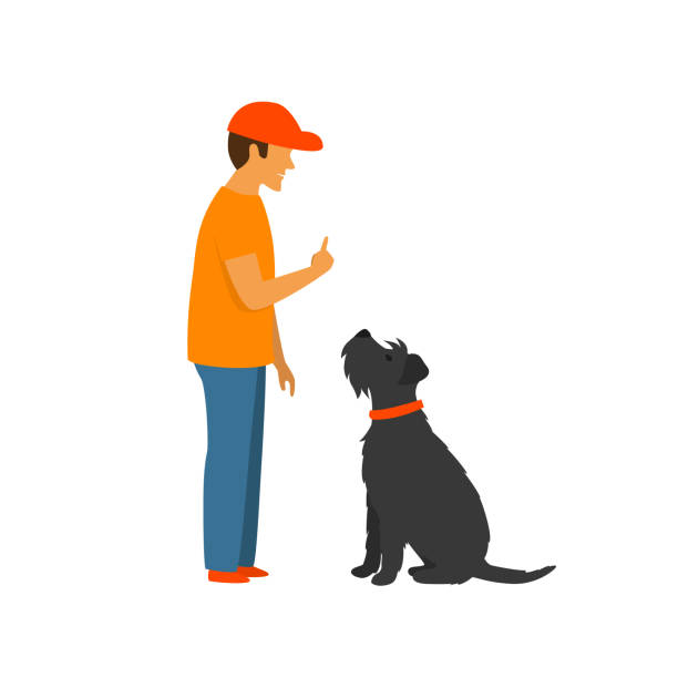 man teaching a dog to stay and sit, basic commands obedience training vector illustration scene man teaching a dog to stay and sit, basic commands obedience training vector illustration scene stunt stock illustrations