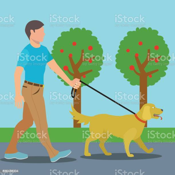 Man walking dog in park vector illustration vector id836438004?b=1&k=6&m=836438004&s=612x612&h=tmfygp vkqdymw1ysqw0qpvw muxqje0xe4zajosmba=