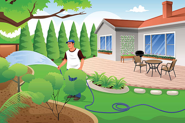 Man watering his grass and garden A vector illustration of man watering his grass and garden in the backyard patio stock illustrations