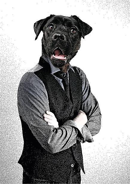 mann mit hund kopf - hipster person stock-grafiken, -clipart, -cartoons und -symbole