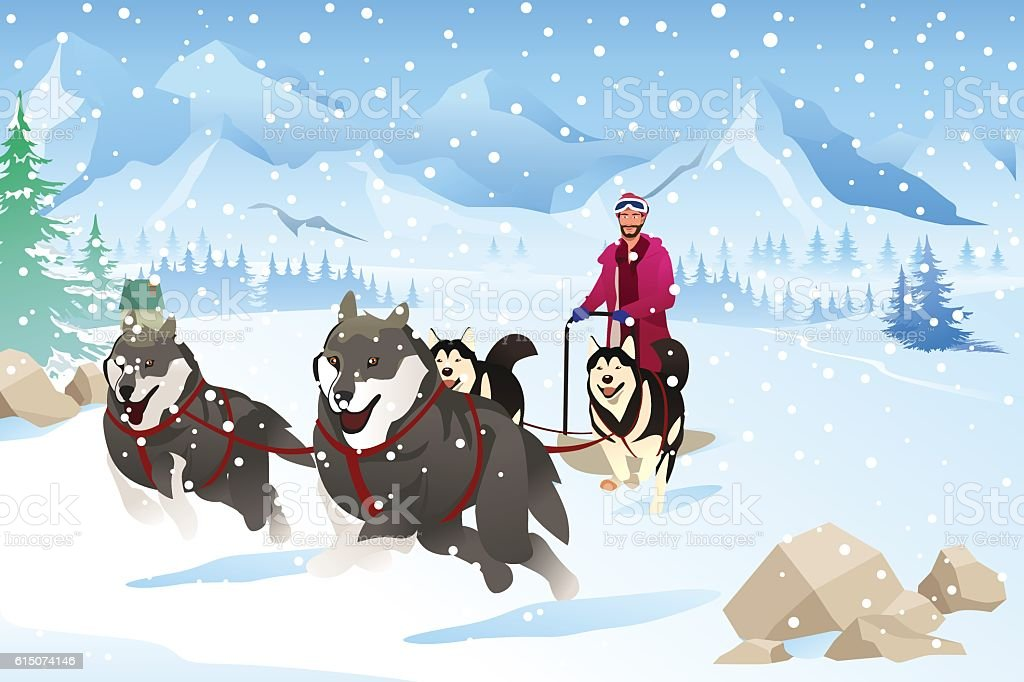 Man with Dogs Sledding in the Snow During Winter vector art illustration