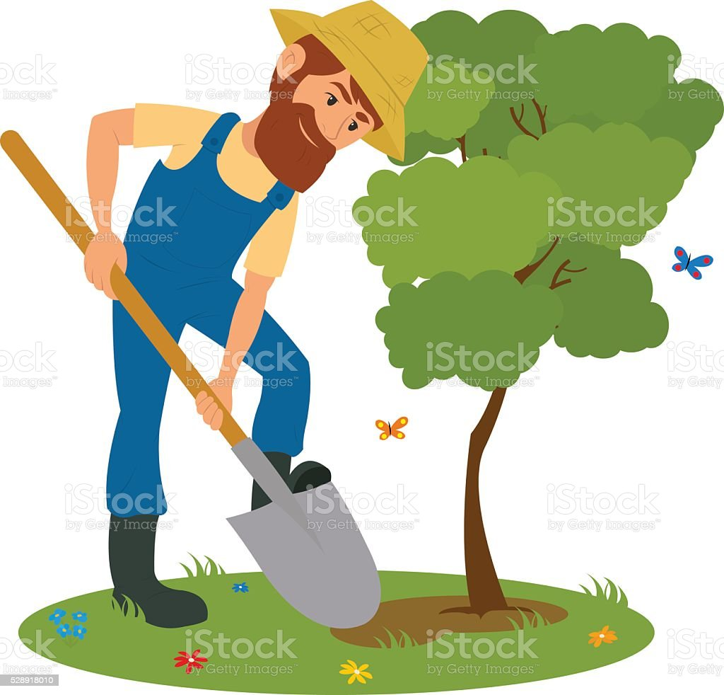 man with shovel planting a tree outdoors. vector art illustration