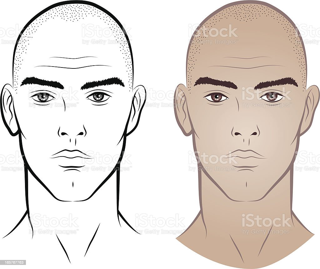 Man without hair vector art illustration