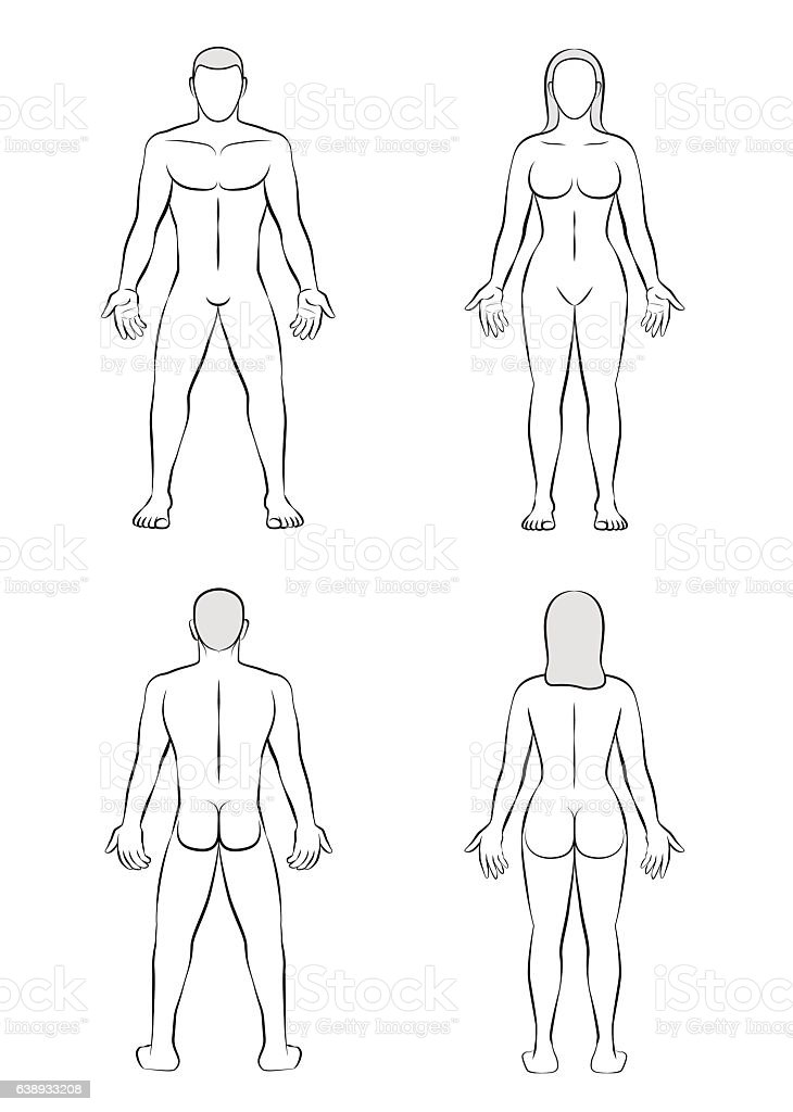 Man Woman Body Blank Outline Illustration Stock Vector Art More