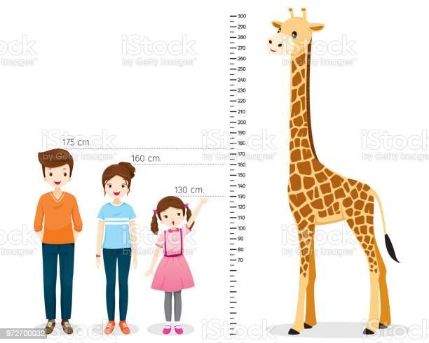 Man Vrouw Meisje Meten Hoogte Met Giraf Stockvectorkunst en meer beelden van Cartoon