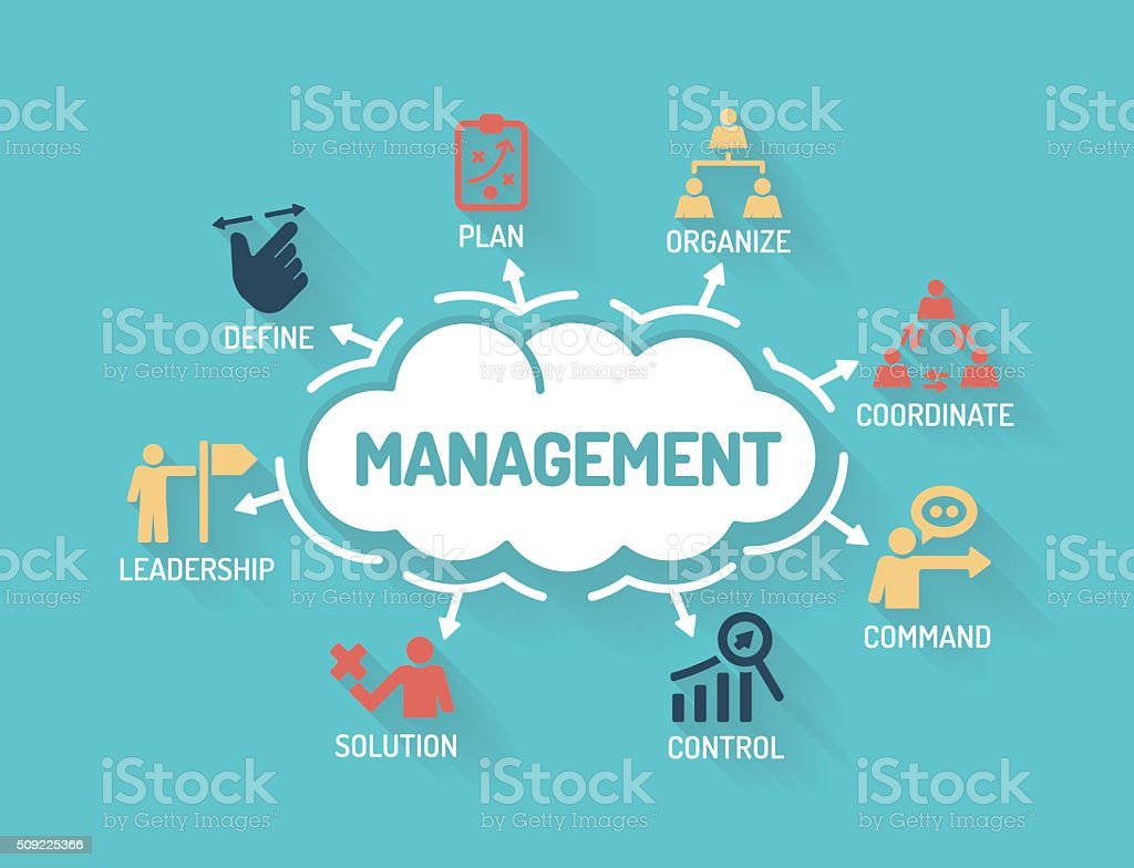 Management - Chart with keywords and icons - Flat Design vector art illustration