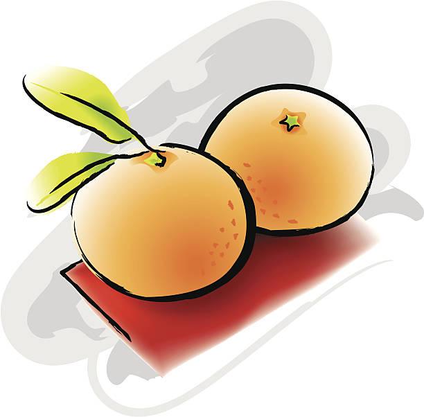 mandaryn pomarańcze - chinese new year stock illustrations