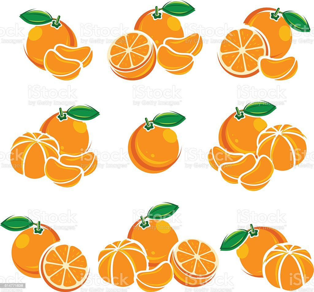 Mandarin set. Vector vector art illustration