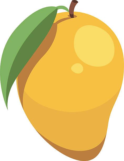 ilustraciones, imágenes clip art, dibujos animados e iconos de stock de mango de historieta - mango
