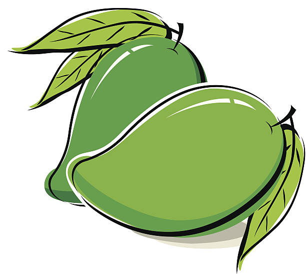 Royalty Free Green Mango Clip Art, Vector Images ...