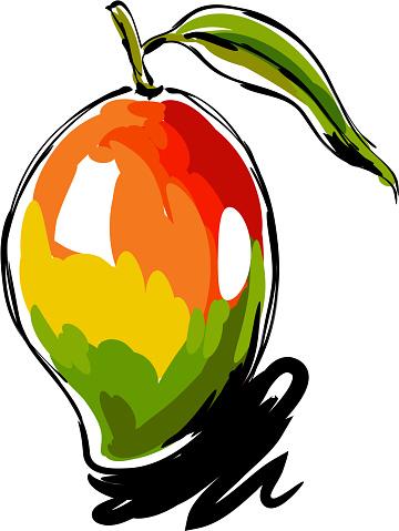 Mango Drawing