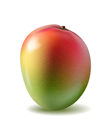 Mango fruit for fresh juice. 3d realistic yellow, red, orange ripe mango isolated on white background for packaging. Vector EPS 10.