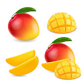 Mango realistic fruit whole and pieces illustration.