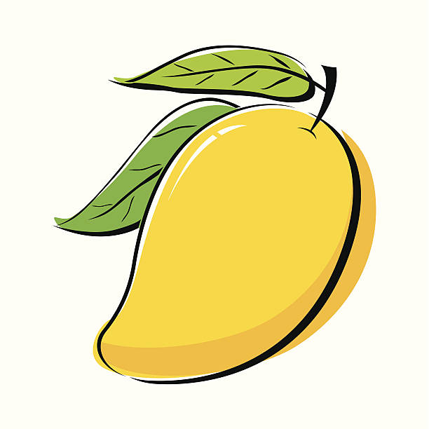 Mango Fruit Clip Art, Vector Images & Illustrations - iStock
