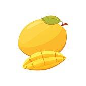 Mango yellow Fruit Isolated Vector illustration. Ripe fresh mangoes.