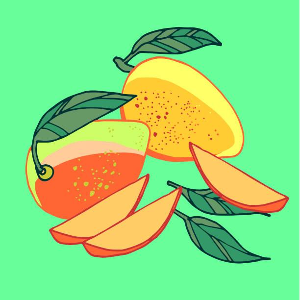 Mangos vector art illustration