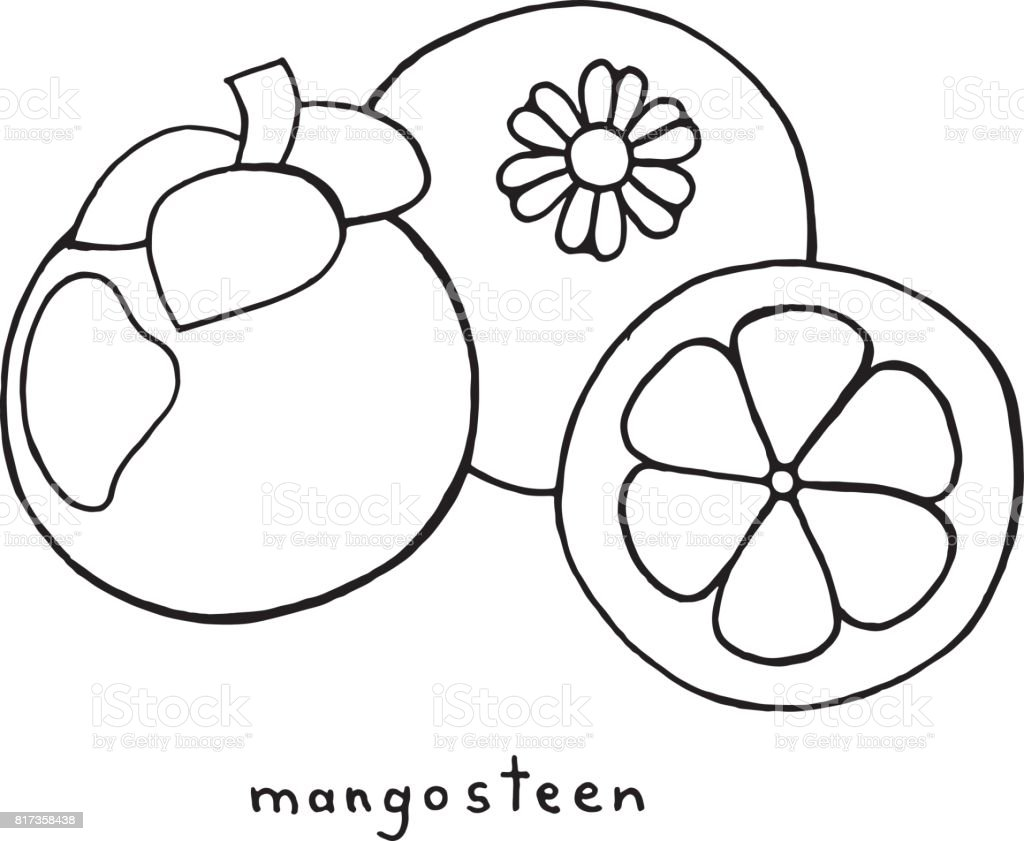 mangosteen coloring pages - photo#7