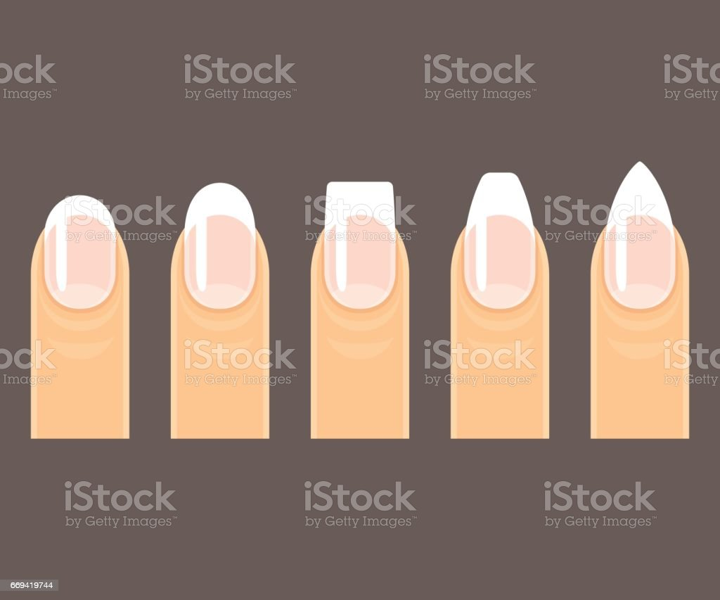 Manicure nail shapes vector art illustration