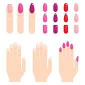 Set of neat elegant wellgroomed female hands and nails. Brush apply bright fashionable nail polish. Flat vector cartoon illustration. Objects isolated on a white background.